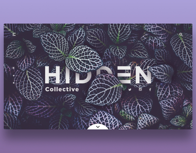 Hidden Collective concept