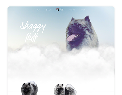 Shaggy Fluff - UI Concept