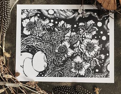 Hellebore Nest—Illustration