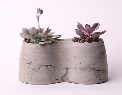 Concrete Planter designed by Iam architecture studio