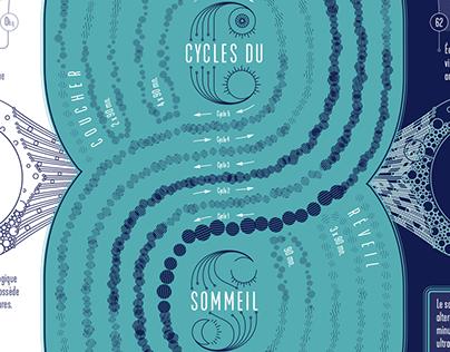 SLEEP CYCLE DATA POSTER
