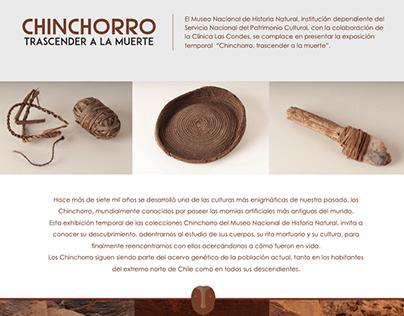 web chinchorro museo Nacional de Historia Natural