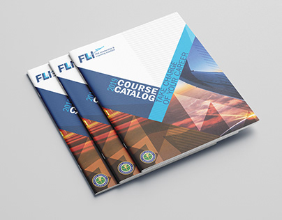 FAA FLLI projects
