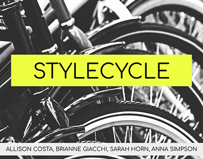 Merchandising Project: Style Cycle