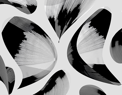 XX17 Patterns