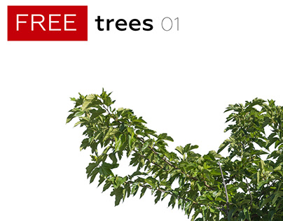 FREE TREES Volume 1