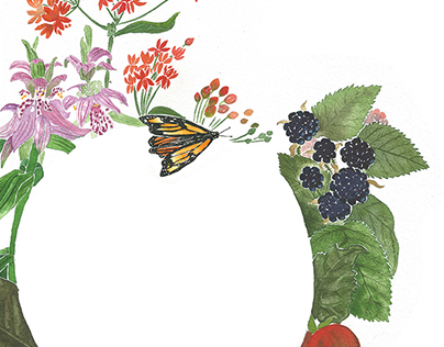 Edible Earth: business card illustration