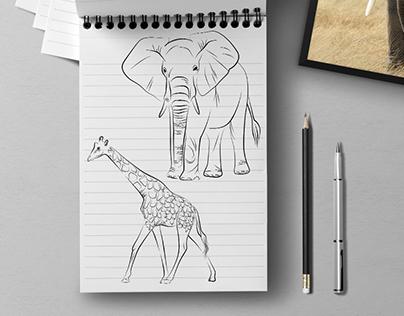 Savannah animals Illustration project