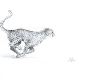 Natural Souls: Leopard