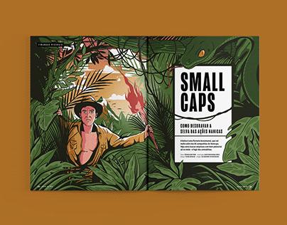 Small Caps - VC/SA
