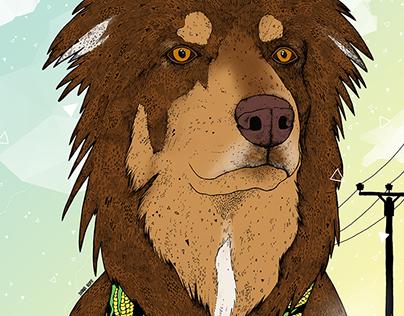 Finn, the Dog