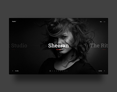 Rayden Portfolio Showcase