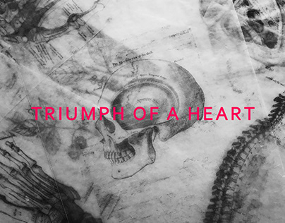 Triumph of a heart by Bjork - album cover