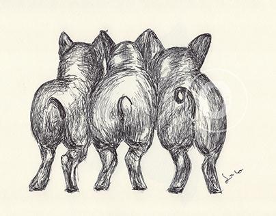 BALLPEN PIGS