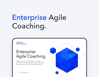 Enterprise Agile Coaching