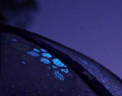 Regenlicht Video