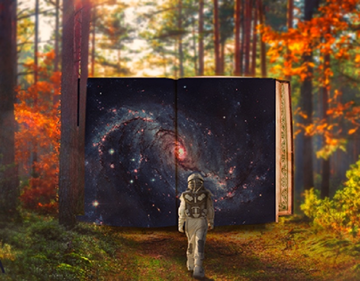 the art of the space