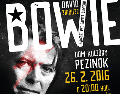 David Bowie Tribut – Multimedia events Visual