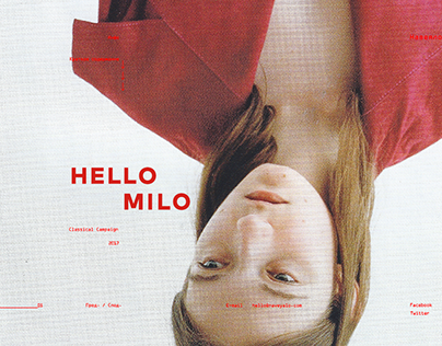 HELLO MILO Concept