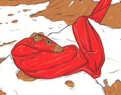 Tallard and the Ladderbird illustrations