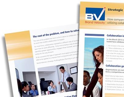 Brand Velocity Sell Sheet