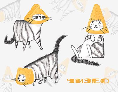 🧀 Cheese cat 🧀