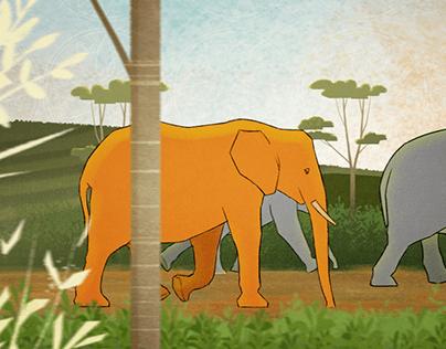 Dilmah Ceylon Animated TVC