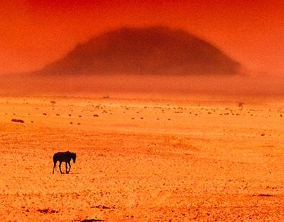 Africa Light / Gray Zone