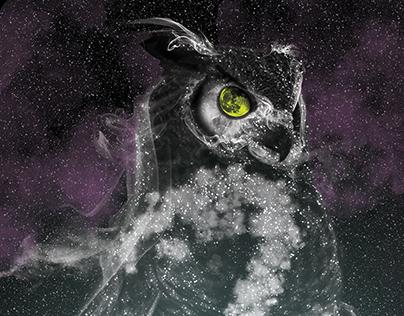 Hootenanny Spirit Owl Fall 2016