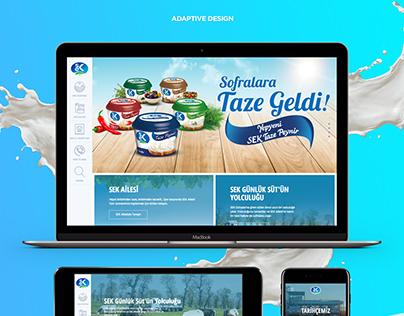 SEK Corporate Website, 2017