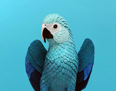 Spix macaw