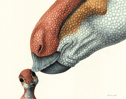 Dinosaur illustrations