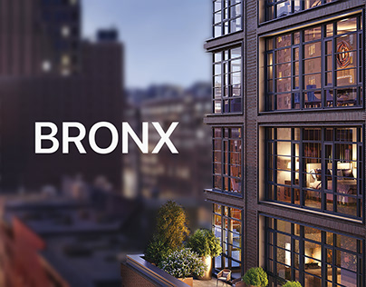 Landing page for Bronx