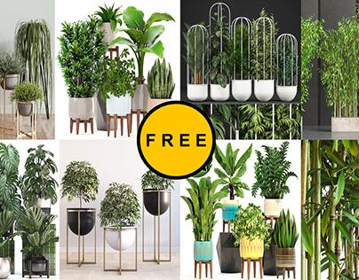 FREE NEW PLANT MODEL
