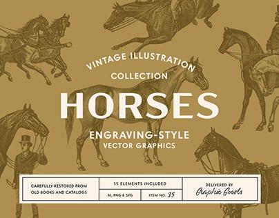 Horses - Vintage Illustration Set