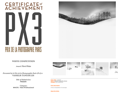 FROZEN / PX3 Competition-First Prize