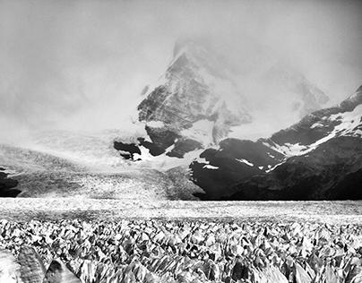 Perito Moreno - Deep Patagonia