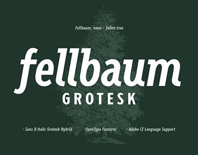 Fellbaum Grotesk Font 2020