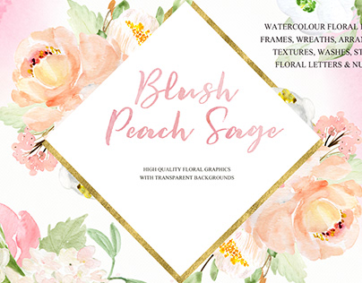 Blush Pink , Peach & Sage. Watercolor flowers clipart