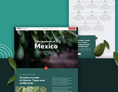 Branding and website design for Mextrade