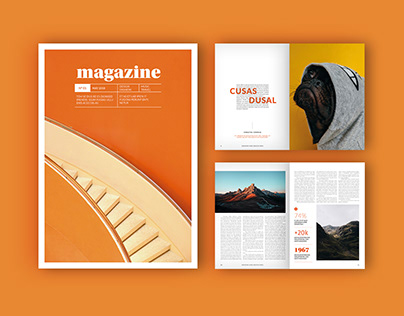 Adobe: Magazine Layout with Orange Accents (Download)