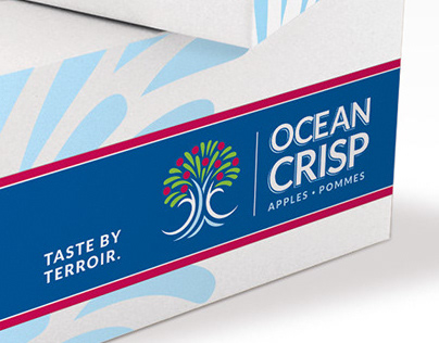 Ocean Crisp Identity
