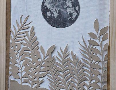 7 Lune