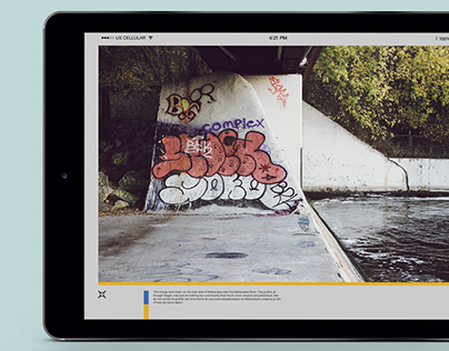 Final Thoughts/MIAD Bridge - Digital Publication