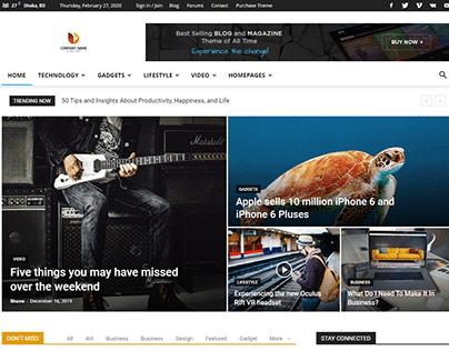 NewsPapers WordPress Theme Customization