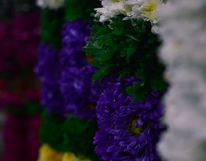 petals and parts
