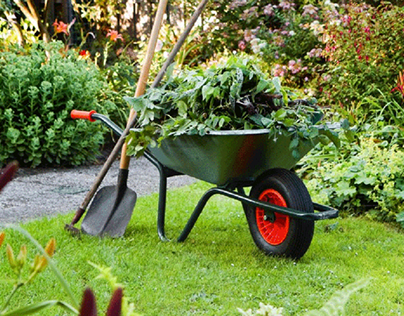 Gardening must-haves