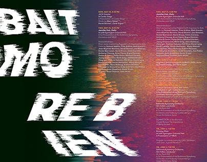 Baltimore Biennial