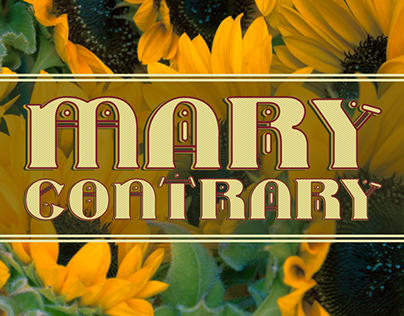 Typeface Design: Mary Contrary