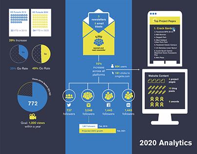 Social Media + Website Analytics Infographic